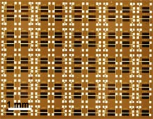 University of California, Berkeley, researchers were able to create an orderly circuit array from two types of tiny nanowires, which can function as optical sensors and transistors. Each of the circuits on the 13-by-20 array serves as a single pixel in an all-nanowire image sensor.