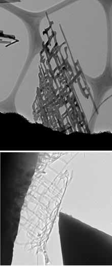 Nanonets, structures made up of branching titanium and silicon wires, are flat yet have a high surface area, making them more efficient at using solar energy to split water into oxygen and hydrogen fuel. The top image shows a nanonet magnified 50,000 times. At bottom, a flexible nanonet rolls up when poked by the tip of a scanning tunneling microscope. Both images were taken with a tunneling electron microscope.